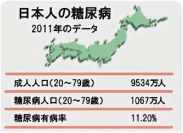 日本人の糖尿病2011年のデータ