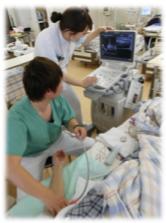 超音波診断装置の操作中
